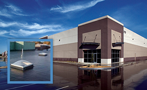 Commercial Roofing Prince Of Wales Hyder County