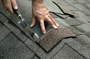 Roof Repair CA
